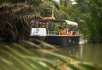 Mekong Delta enjoys tourism growth